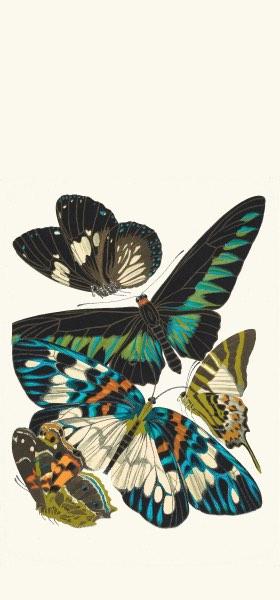 Papillons, Pl. 10 by Emile-Allain Séguy Wallpaper