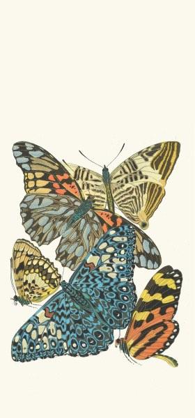 Papillons, Pl. 3 by Emile-Allain Séguy Wallpaper