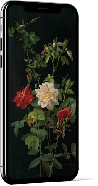 Roses and Buds by George Cochran Lambdin Wallpaper