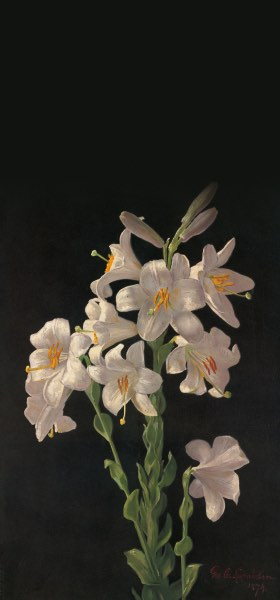 Easter Lilies by George Cochran Lambdin Wallpaper