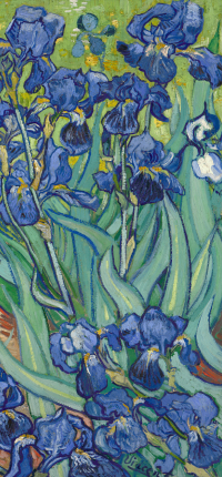 Irises by Van Gogh Wallpaper