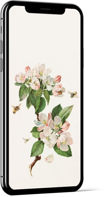 Apple Blossoms and Bees by Alois Lunzer Wallpaper