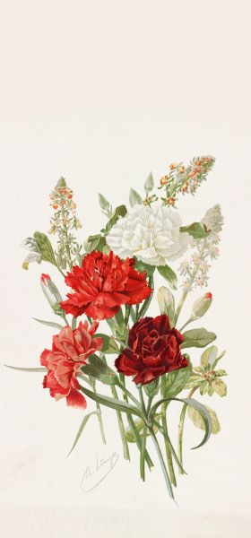 Carnations and Mignonette by Alois Lunzer Wallpaper