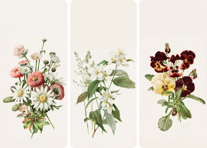 Botanical illustrations by Alois Lunzer - Wallpaper Collection