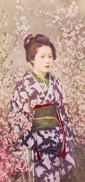 Geisha Cherry Blossom by Ogawa Kazumasa Wallpaper
