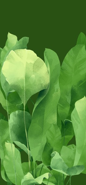 Green leaves by Adara Sánchez Wallpaper